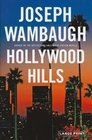 Hollywood Hills A Novel