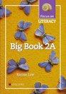 Focus on Literacy Big Book 2A