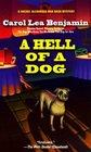 A Hell of a Dog (Rachel Alexander and Dash, Bk 3)