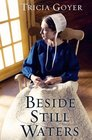 Beside Still Waters (Big Sky, Bk 1)