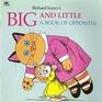 Big  Little (Look-Look)