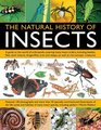 The Natural History Of Insects A mouthwatering collection of 60 recipes in over 270 stepbystep photographs