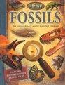 Viewfinder Fossils