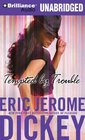 Tempted by Trouble A Novel