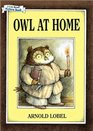 Owl at Home