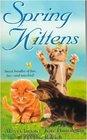Spring Kittens The Last Kitten / The Royal Kitten / The Naughty Kitten