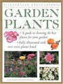 Illustrated Encyclopedia Garden Plants
