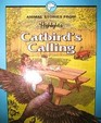 Catbird's calling and other animal stories