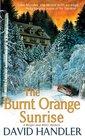 The Burnt Orange Sunrise (Berger and Mitry, Bk 4)