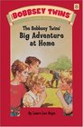The Bobbsey Twins\' Big Adventure At Home (Bobbsey Twins (Hardcover))