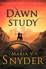 DAWN STUDY-STUDY SERIES NOTPB