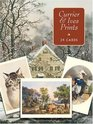 Currier  Ives Cards in Full Color : 24 Ready-to-Mail Cards (Card Books)
