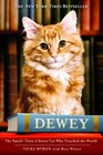 Dewey: The Small-Town Library Cat Who Touched the World (Large Print)