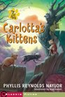 Carlotta's Kittens : And the Club of Mysteries