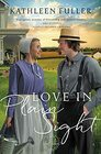 Love in Plain Sight (An Amish Mail-Order Bride Novel)