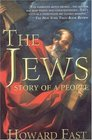 The Jews Story of a People