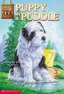 Puppy in a Puddle (Animal Ark, Bk 28)
