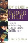 How to Raise an Indigo Child: 10 Keys for Cultivating a Child's Natural Brilliance