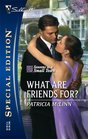What Are Friends For? (Seasons in a Small Town, Bk 1) (Silhouette Special Edition, No 1749)