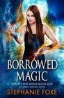 Borrowed Magic: An Urban Fantasy Novel (Witch's Bite Series) (Volume 1)