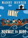Norway to Hide (Passport to Peril, No 6) (Large Print)