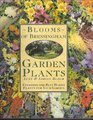 Blooms of Bressingham Garden Plants Choosing the Best Hardy Plants for Your Garden
