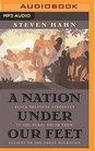 A Nation Under Our Feet Black Political Struggles in the Rural South from Slavery to the Great Migration