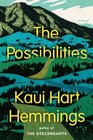 The Possibilities A Novel