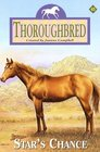 Star's Chance (Thoroughbred, Bk 45)