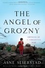 The Angel of Grozny Orphans of a Forgotten War