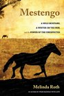 Mestengo A Wild Mustang a Writer on the Run and the Power of the Unexpected