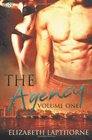 The Agency Vol 1 Flirting with Danger / Courting Passion
