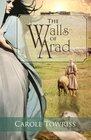 The Walls of Arad