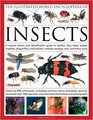 The Illustrated World Encyclopedia of Insects A natural history and identification guide to beetles flies bees wasps springtails mayflies stoneflies  crickets bugs grasshoppers fleas spide