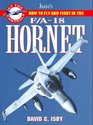 F/A-18 Hornet How to Fly and Fight