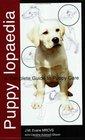 Puppy Lopaedia