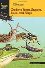Basic Illustrated Guide to Frogs Snakes Bugs and Slugs