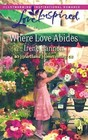 Where Love Abides (Heartland Homecoming, Bk 3) (Love Inspired, No 443)