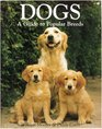Dogs A Guide to Popular Breeds