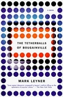 The Tetherballs of Bougainville  A Novel