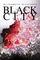 Black City (Black City, Bk 1)