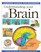 Understanding Your Brain: Lifting the Lid on What's Inside Your Head