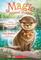 Chloe Slipperslide's Secret (Magic Animal Friends #11)