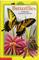 Butterflies (All Aboard Reading: Level 1)